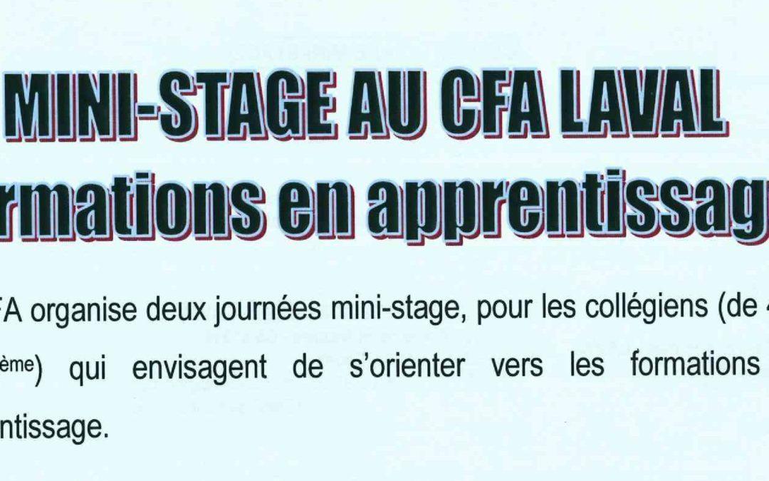 Mini-Stage au CFA Laval Formations en apprentissage